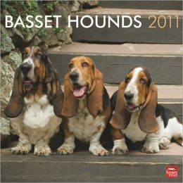 2011 Basset Hounds Square Wall Calendar