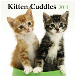 2011 Kitten Cuddles PLATO Square Wall Calendar