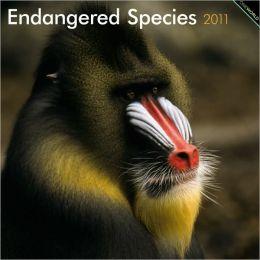 2011 Endangered Species Square Wall Calendar