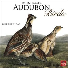 2011 Audubon Birds Square Wall Calendar
