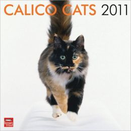 2011 Calico Cats Square Wall Calendar