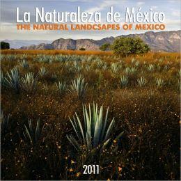 2011 La Naturaleza de Mexico/Natural Landscapes of Mexico Square Wall Calendar
