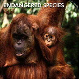 2012 Endangered Species Square 12X12 Wall Calendar