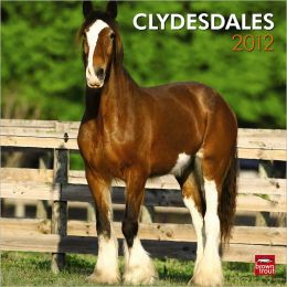 2012 Clydesdales Square 12X12 Wall Calendar