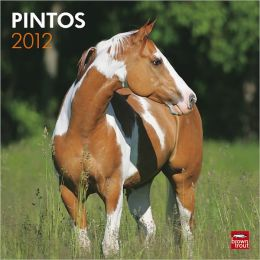 2012 Pintos Square 12X12 Wall Calendar
