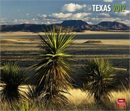 2012 Texas, Wild & Scenic Deluxe Wall Calendar