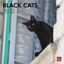 2012 Black Cats Square 12X12 Wall Calendar