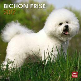 2012 Bichon Frise Square 12X12 Wall Calendar