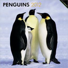 2012 Penguins Square 12X12 Wall Calendar