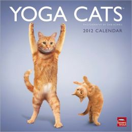 2012 Yoga Cats Square 12X12 Wall Calendar