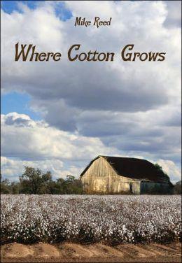 Where Cotton Grows