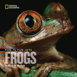 Face to Face with Frogs