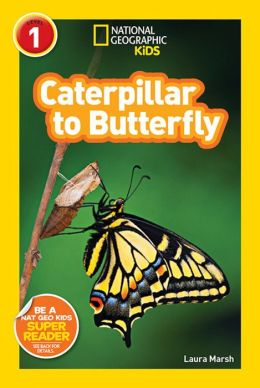 Caterpillar to Butterfly (National Geographic Readers Series)
