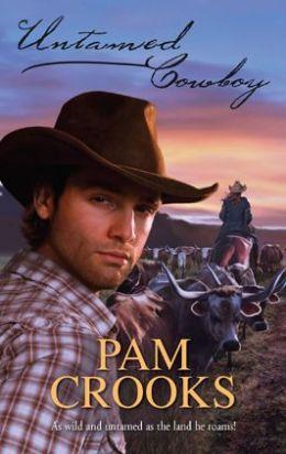 Untamed Cowboy (Harlequin Historical #857)