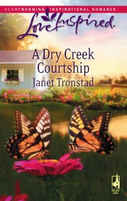 Dry Creek Courtship (Love Inspired Series)