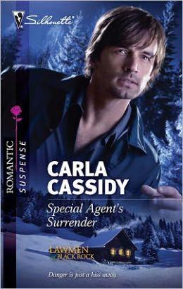 Special Agent's Surrender (Silhouette Romantic Suspense #1648)
