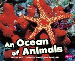 An Ocean of Animals