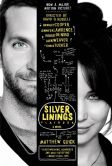 Book Cover Image. Title: The Silver Linings Playbook, Author: Matthew Quick