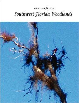 Scenes from Southwest Florida Woodlands