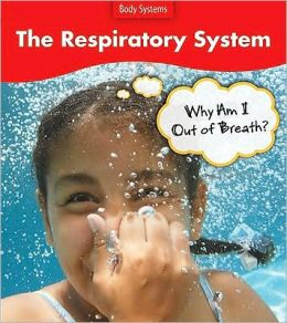 The Respiratory System: Why Do I Feel Out of Breath?