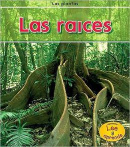 Las raices (Roots)