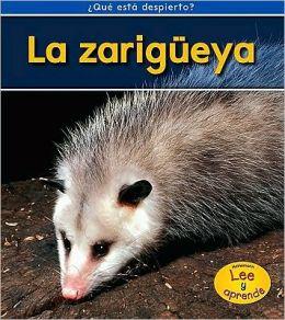 La zarigueya (Opossums)