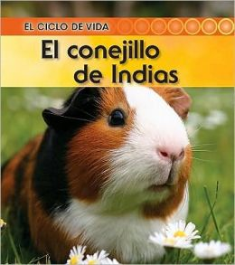 El conejillo de Indias (Guinea Pig)