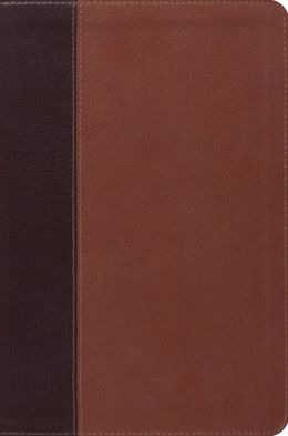 ESV Single Column Legacy Bible ((Pocket Cover), TruTone, Brown/Cordovan, Portfolio Design)
