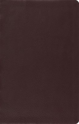 ESV Large Print Thinline Reference Bible (Brown)