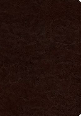 ESV Study Bible (TruTone, Deep Brown)