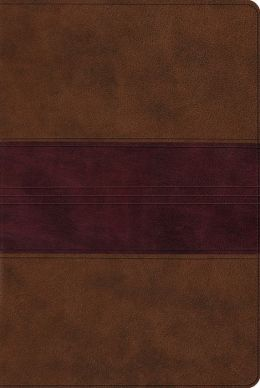 ESV Single Column Heritage Bible (TruTone, Chocolate/Plum, Trail Design)