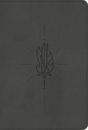 Book ESV Kid's Bible, Compact (TruTone, Sword of the Spirit)