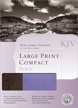 KJV Large Print Compact Bible (Brown/Purple Duotone)