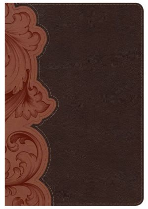KJV Study Bible Personal Size, Dark Umber/Sienna LeatherTouch Indexed