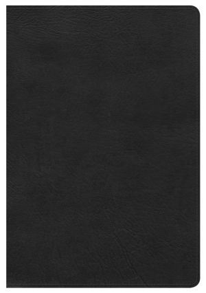 HCSB Giant Print Reference Bible, Black LeatherTouch, Indexed