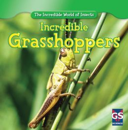 Incredible Grasshoppers