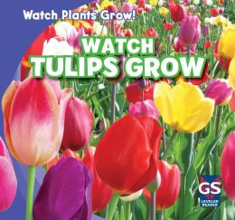 Watch Tulips Grow