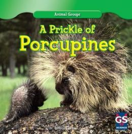 A Prickle of Porcupines