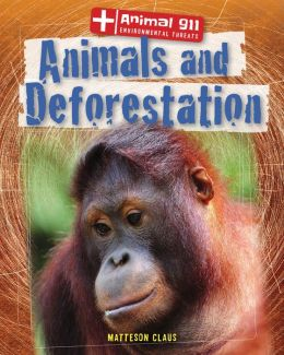 Animals and Deforestation