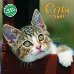 2009 Cats Mini Wall Calendar
