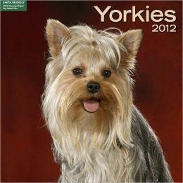2012 Yorkies Wall Calendar