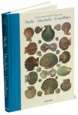 Shells: Conchology or the Natural History of Sea, Freshwater, Terrestrial and Fossil Shells