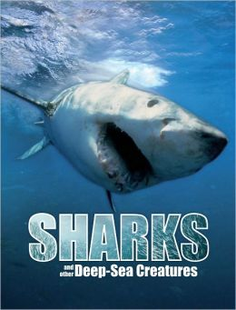 Great Big Book of Sharks and Other Deep-Sea Creatures