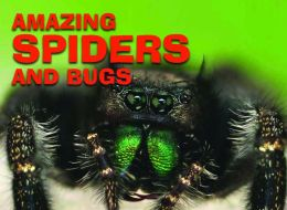 Amazing Spiders and Bugs