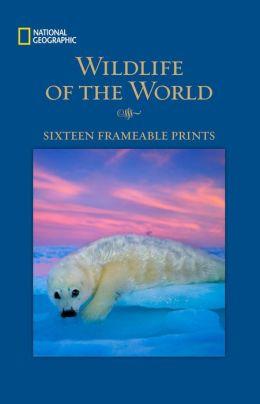 Wildlife: Sixteen Frameable Prints