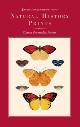 Natural History Prints: Sixteen Frameable Posters