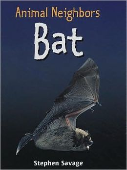 British Animals - Bat