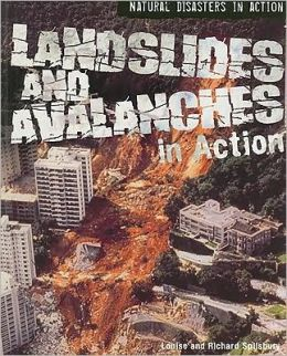 Landslides and Avalanches in Action