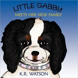 Little Gabby Meets Her New Family