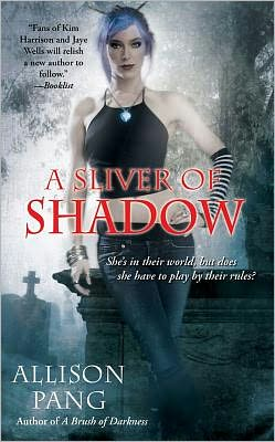 A Sliver of Shadow (Abby Sinclair Series #2)